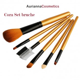 AC Caro Set Brushes